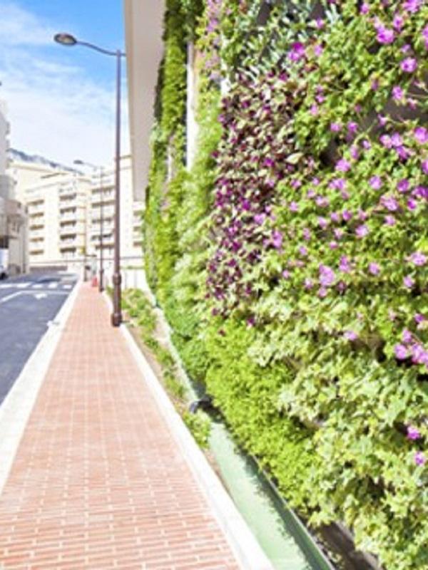 Tecnología verde para convertir con residuos vegetales una pantalla contra el ruido