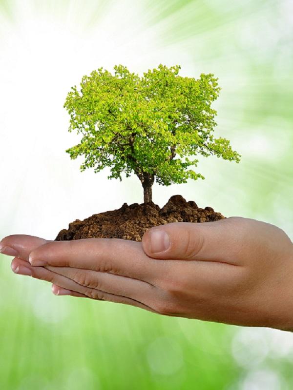 AENOR: formación ambiental especializada de calidad