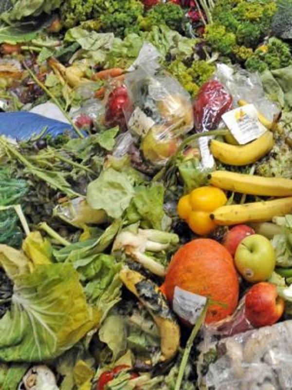 El desperdicio alimentario post-cosecha nutriría en África Subsahariana a 48 millones de personas