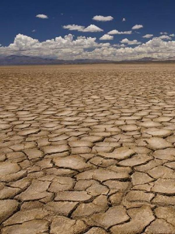 Huelva aborda desde este miércoles los efectos del cambio climático en un curso de verano en la UNIA