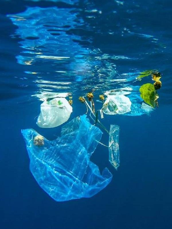 Dos docenas de barcos participan en 'Upcycling the Oceans'