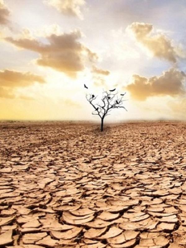 Polémica a cuenta del Observatorio del Cambio Climático