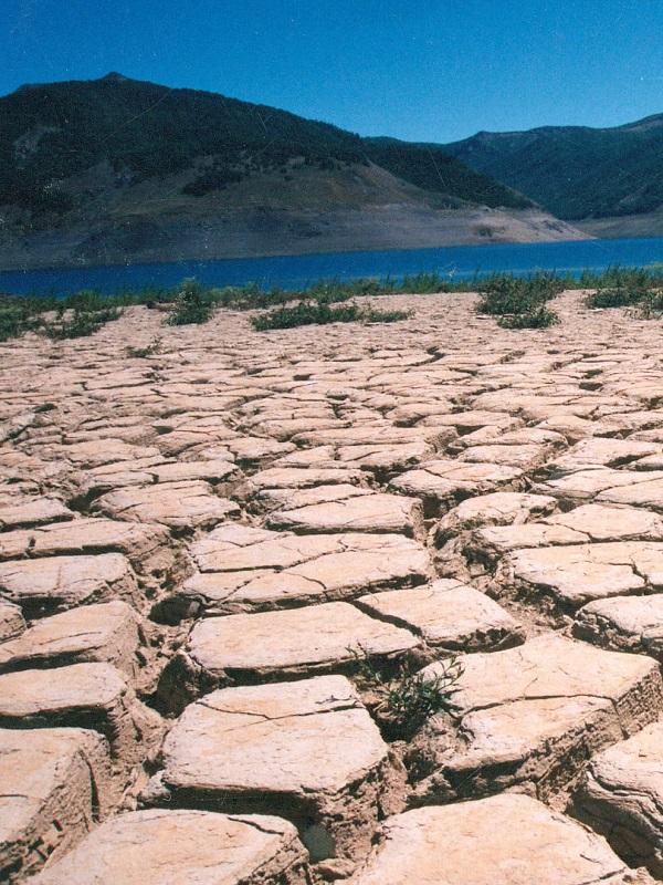 La industria bancaria presenta nuevas metodologías para afrontar los retos del cambio climático