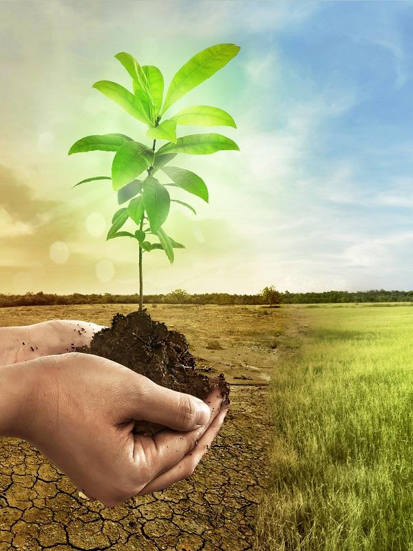 Unidos Podemos presenta su ley de cambio climático