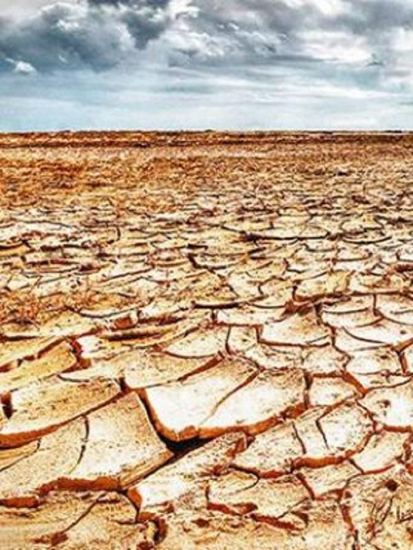 El anteproyecto de Ley de Cambio Climático de Baleares incorporará alegaciones