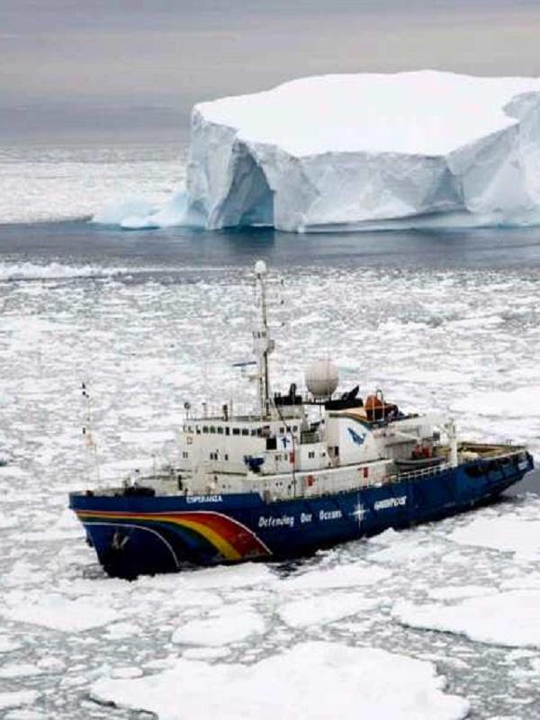 Descubren cuatro Ecosistemas Marinos Vulnerables en el fondo de la Antártida