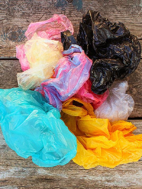 Los cargos de EQUO impulsarán medidas para reducir el consumo de plástico en sus municipios y ciudades