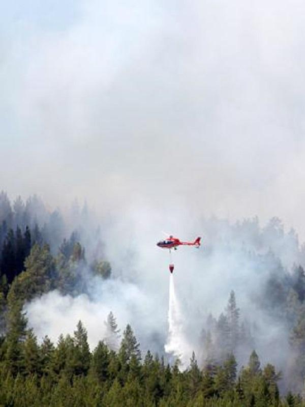 Los incendios forestales se van comiendo el Círculo Polar Ártico