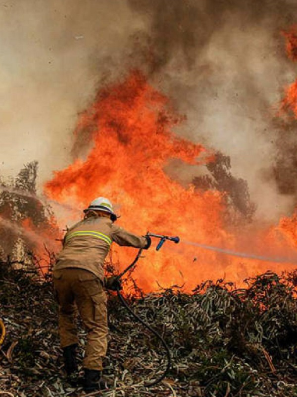 Europa coordina el mayor despliegue de medios de la historia para luchar contra los incendios forestales en Suecia