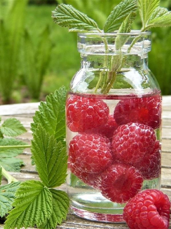 Dehesa El Milagro nos enseña a mantener la fruta siempre fresca en verano
