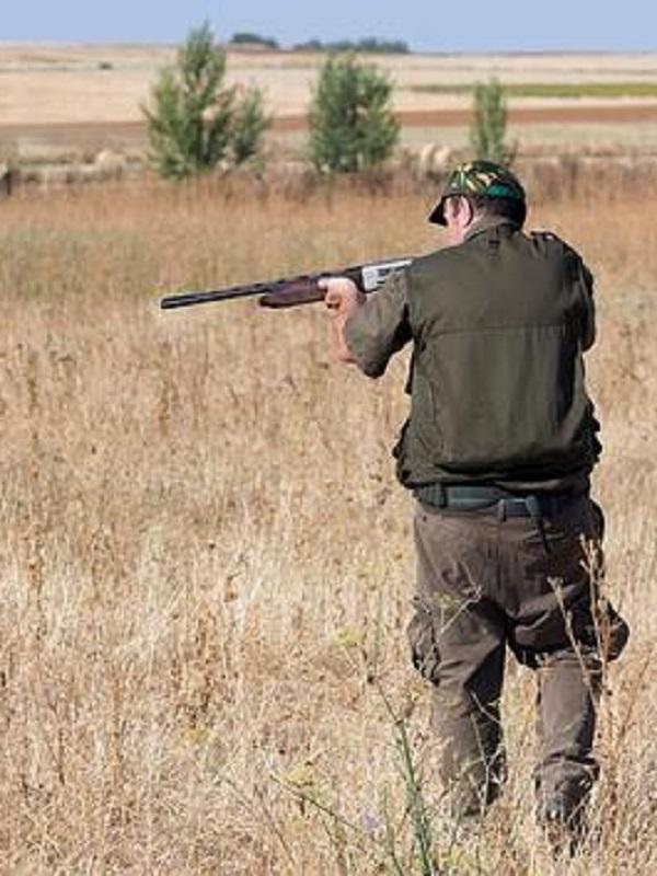 El 'cáncer' de la caza en el medio rural