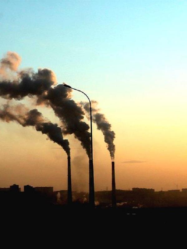 El Consejo Rector del Fondo de Carbono selecciona 132 propuestas de Proyectos Clima 2018 de las 146 presentadas