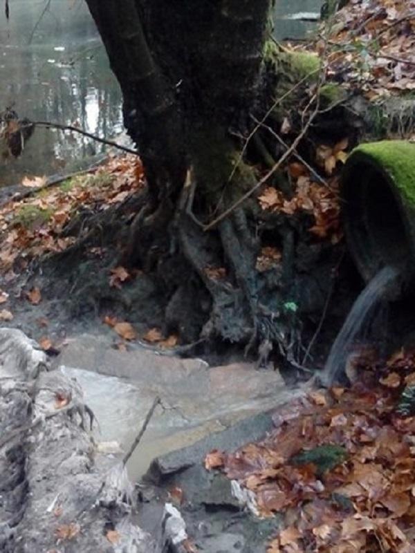 El Ministerio para la Transición Ecológica se pone las pilas tras el multazo de Europa para elaborar un Plan Nacional de aguas residuales
