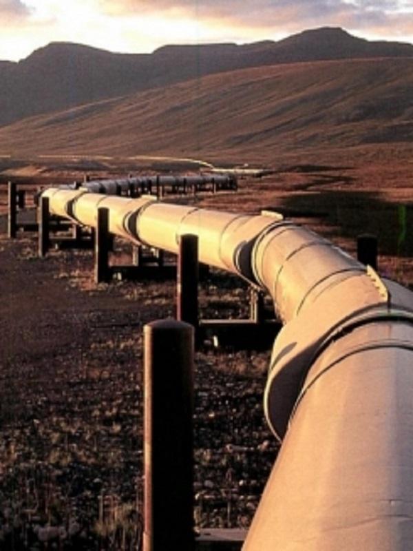 La red 'Gas no es solución' pide al Gobierno español que rechace el MidCat en la cumbre con Francia