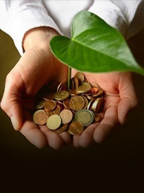 Fórmate GRATIS en el Programa Destino Empleo Verde