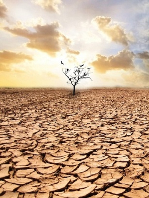 Los españoles nº 1 en el Ranking de preocupación por el cambio climático en el Mundo
