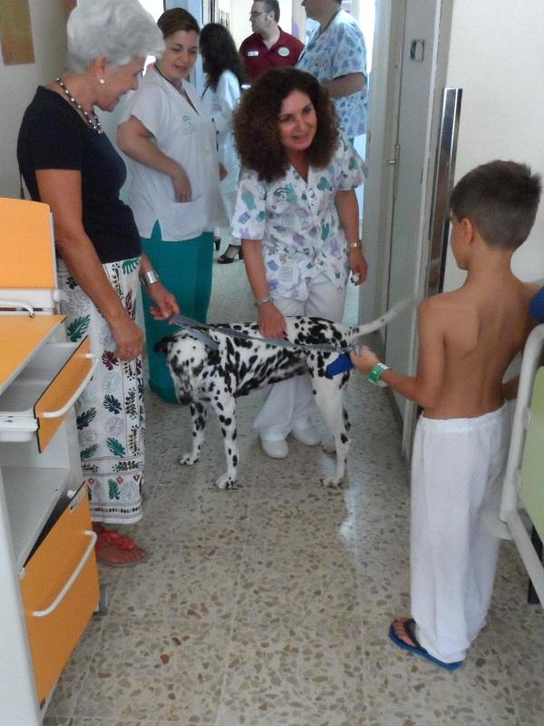 El Hospital Puerta del Mar de Cádiz arranca un programa de visitas animales