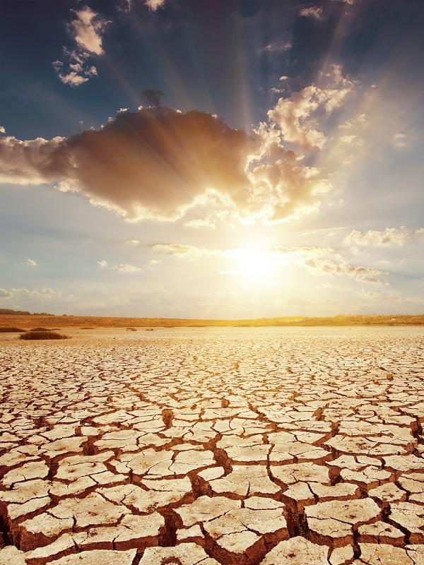 Los modelos económicos subestiman los riesgos del cambio climático