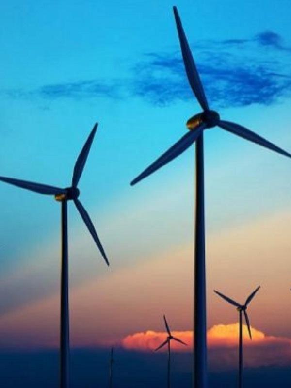 Telefónica se apunta a la energía renovable