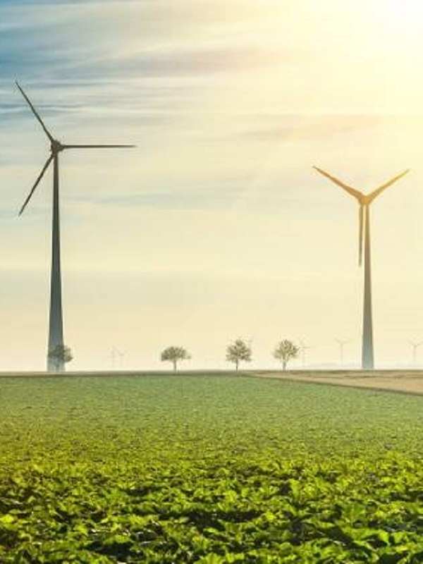 Teresa Ribera puede y debe conducirnos más pronto que tarde a la Transición Energética