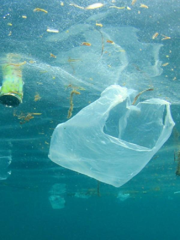 Clean Waves, la iniciativa para recaudar fondos contra la contaminación plástica marina