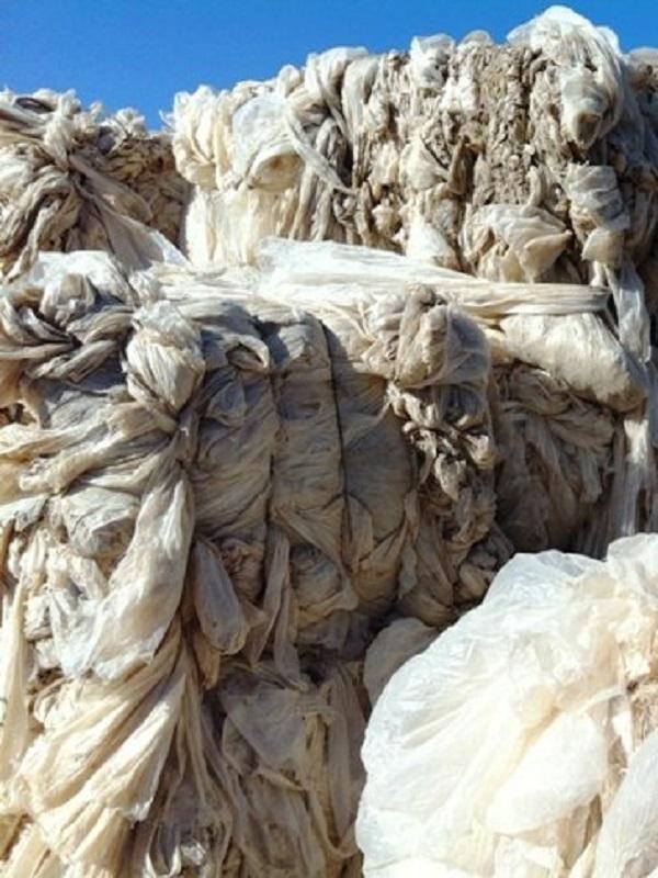 UAGN, UCAN, Elkarkide y Solteco Madera Plástica apuestan por la reducción y reutilización del residuo plástico agrícola