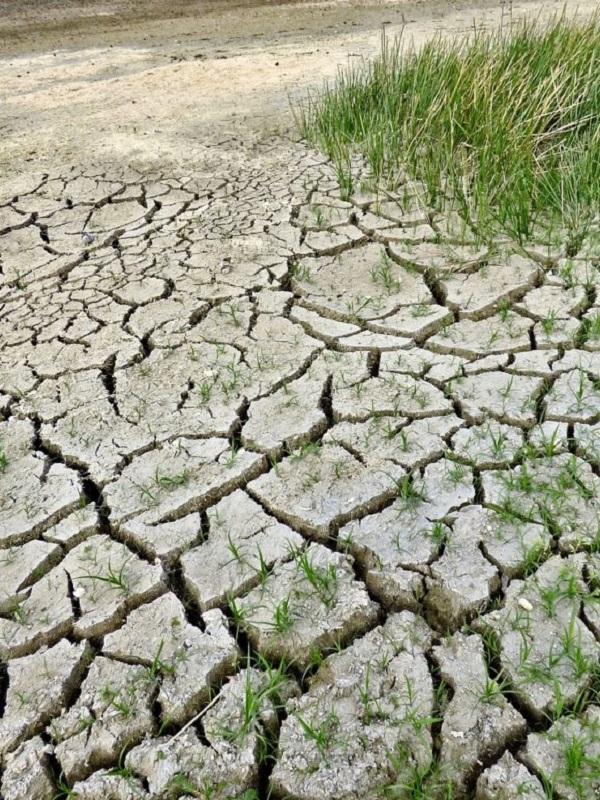 La Diputación de Badajoz expone sus trabajo sobre cambio climático en un foro de administraciones locales en Tarragona