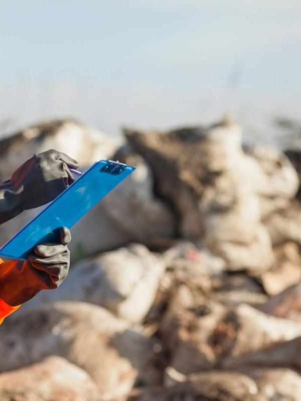 Europa denuncia a España por la mala gestión de residuos en Aragón, Baleares, Canarias, Madrid y Ceuta