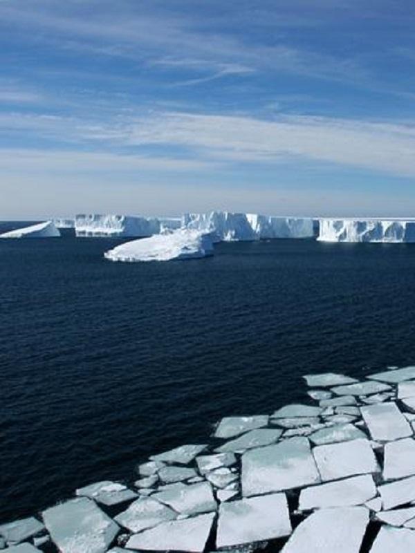 Se puede y se debe crear con carácter de urgencia un Santuario en el Antártico