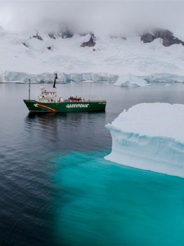 Día Mundial de los Océanos. Plásticos y sustancias químicas peligrosas en el agua y la nieve de la Antártida
