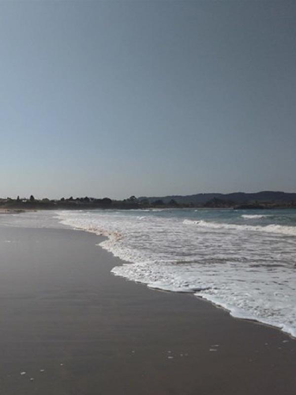 La nefasta calidad del agua de mar en Gijón
