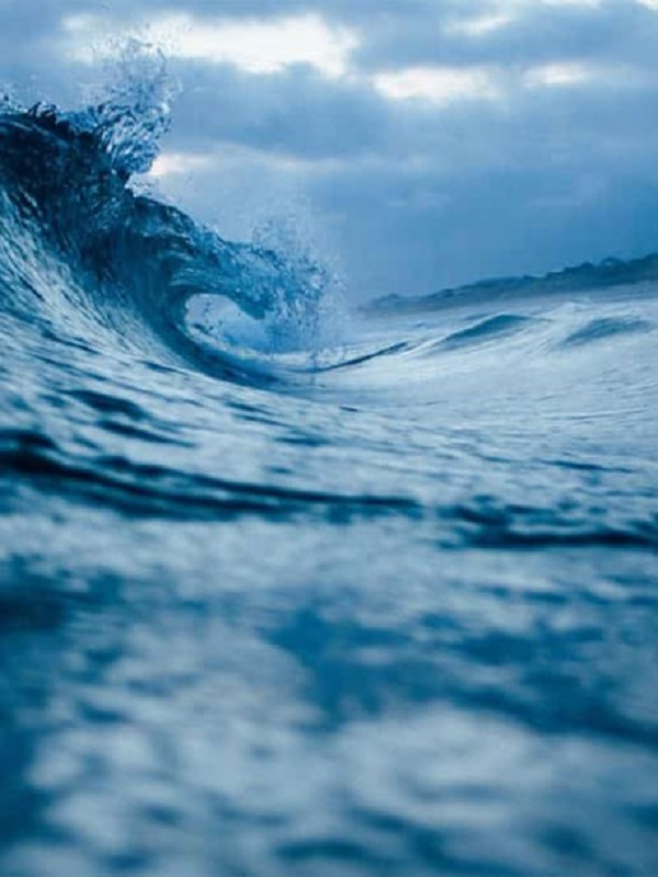 Identifican nuevos causantes de la desoxigenación oceánica
