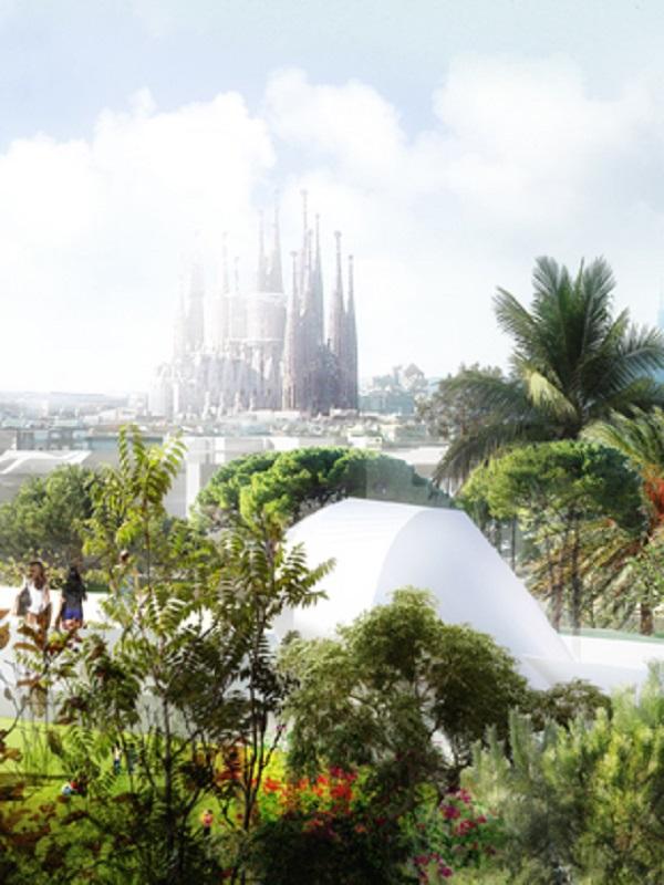 Barcelona en busca de un nuevo modelo de verde urbano