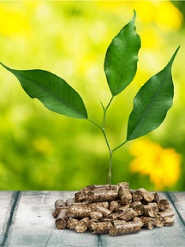 En el 2017 la biomasa de calefacción genero un negocio de 855 millones en España