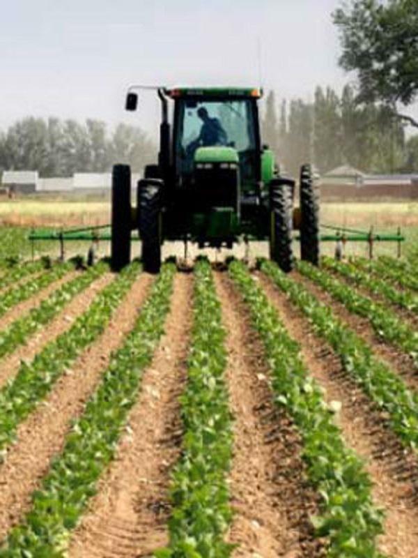 Los agricultores ecológicos de Castilla – La Mancha en pie de guerra