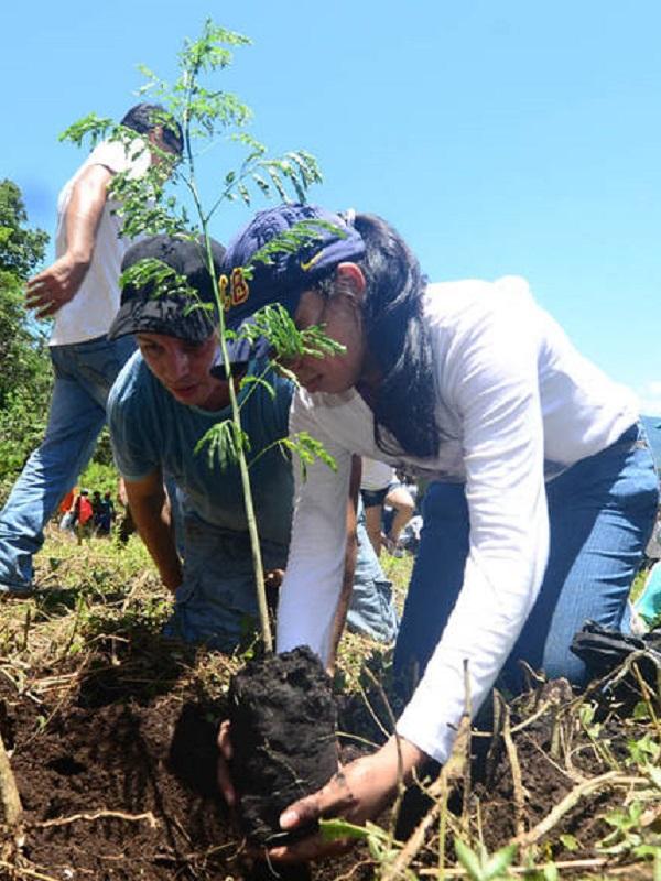 Fundación Aquae lucha contra la desertificación mediante proyectos de reforestación con la campaña Sembrando Oxígeno