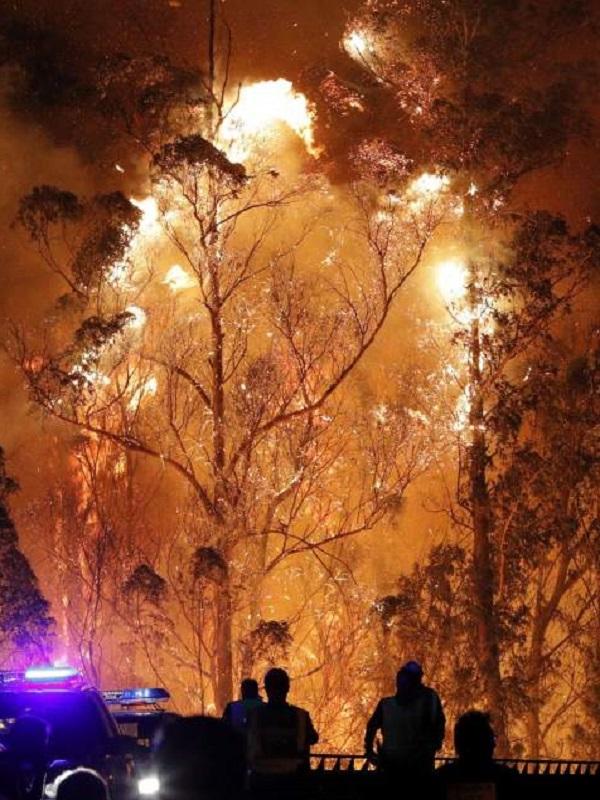 El fuego arrasa 8.643 hectáreas en los cinco primeros meses de 2018, un 80% menos que hace un año