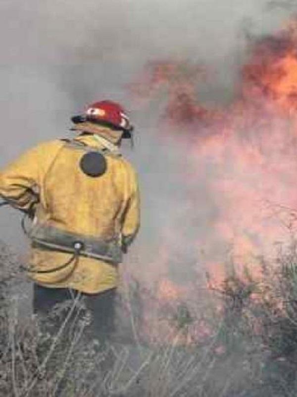 Una docena de personas fueron detenidas en 2017 acusadas de delitos de incendios forestales en Córdoba