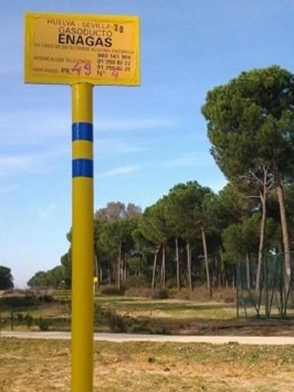 Podemos defiende en el Parlamento un pacto para blindar Doñana