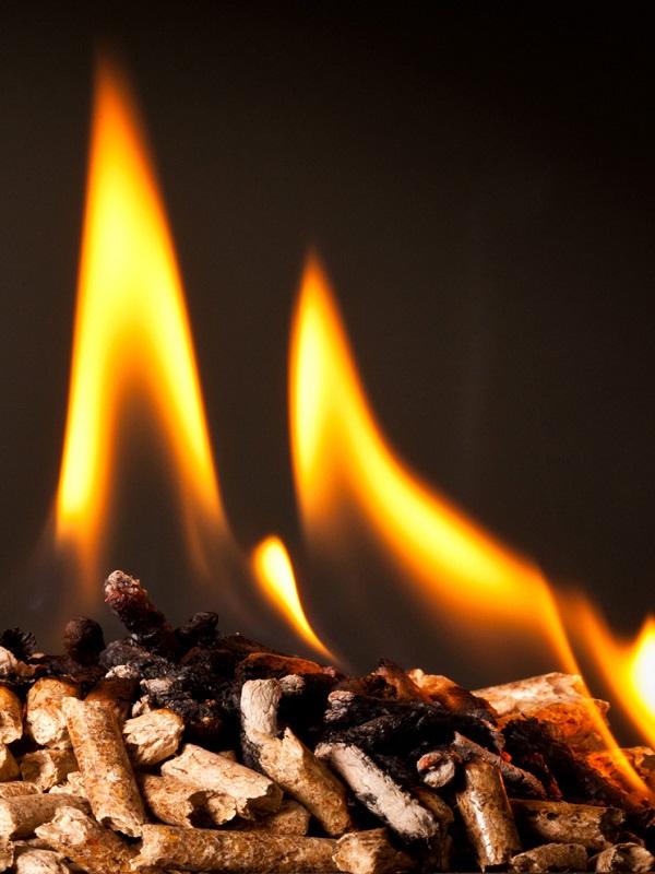 Aldro Energía muestra en Genera 2018 cómo ahorrar con una planta de biomasa