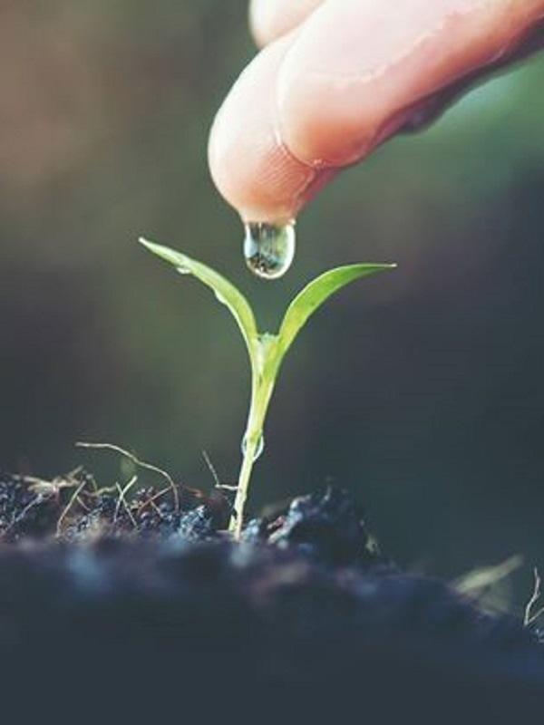 La UAB reúne expertos mundiales en decrecimiento y justicia ambiental