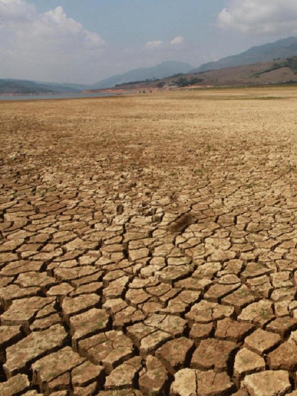 La Comunidad de Madrid incorpora un Comisionado de Cambio Climático