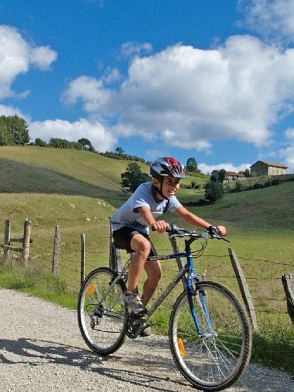 Desde el 30 de junio se ofrecen 44 paseos guiados en bicicleta por distintos itinerarios de Navarra