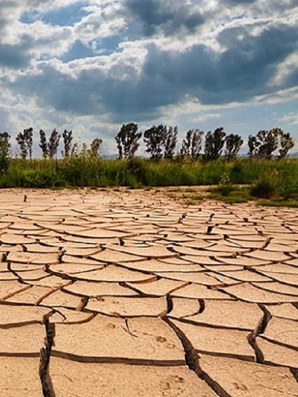 EQUO preguntará al Gobierno su hoja de ruta para elaborar una Ley de Cambio Climático y Transición Energética esta legislatura