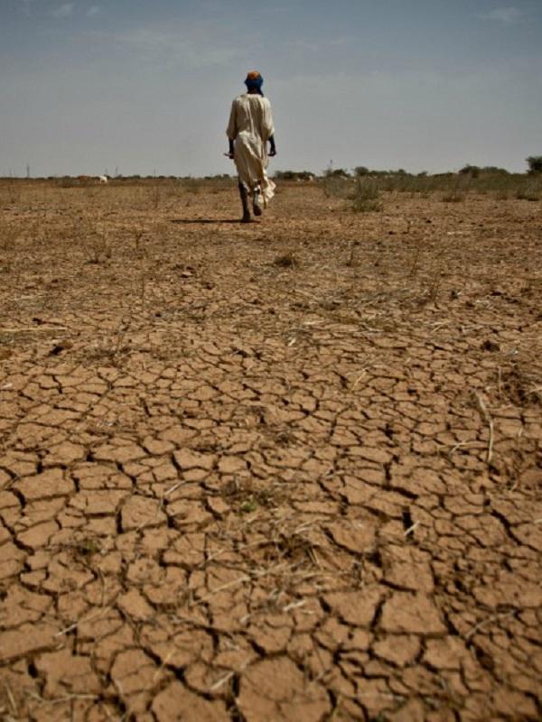 Rastrean con móviles las migraciones debidas al cambio climático