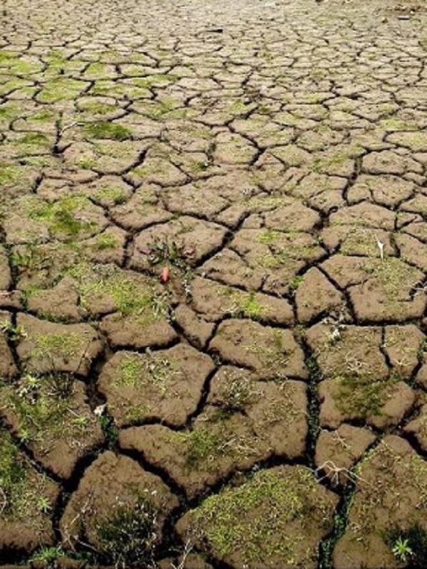 El Gobierno estudia el borrador de la ley de cambio climático del PP y quiere presentar una norma antes de verano