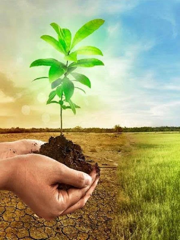 Día Mundial del Medio Ambiente, este año con sede en la India