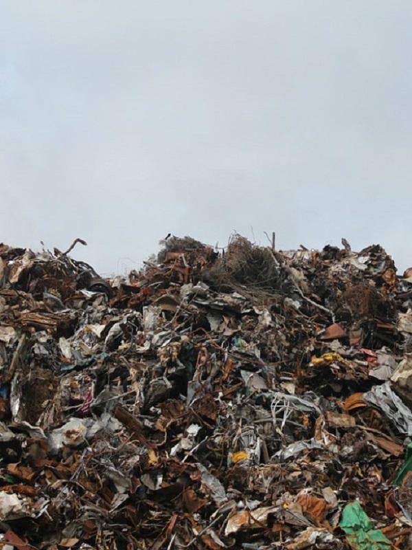 EQUO denuncia la nefasta gestión de los residuos en España