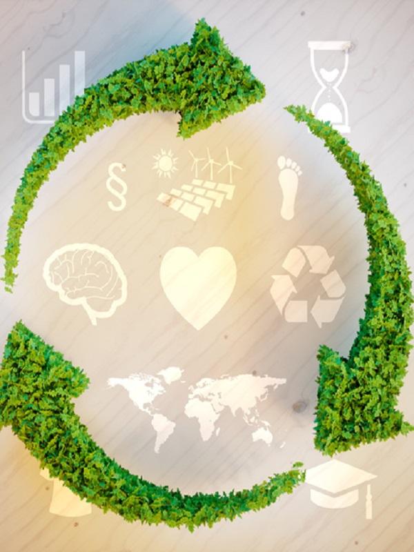 Supervisión y control de la implementación de la economía circular en Navarra