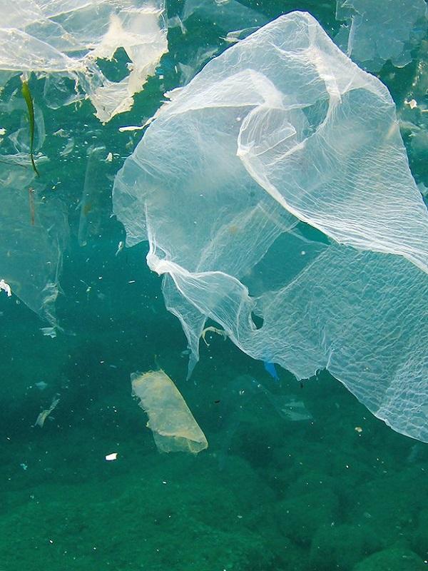 Los pescadores de Gandía se comprometen con la recogida de basuras marinas